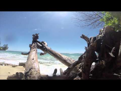Oahu Island Living  | Hawaii 2015 | Flow Adventures Pt 4
