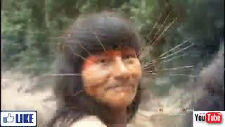 best wild life of amazon girls isolation on the planet   live full documentary new