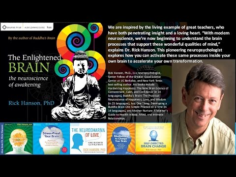 Rick Hanson, PhD – The Enlightened Brain (Audio Learning Course - excerpt)