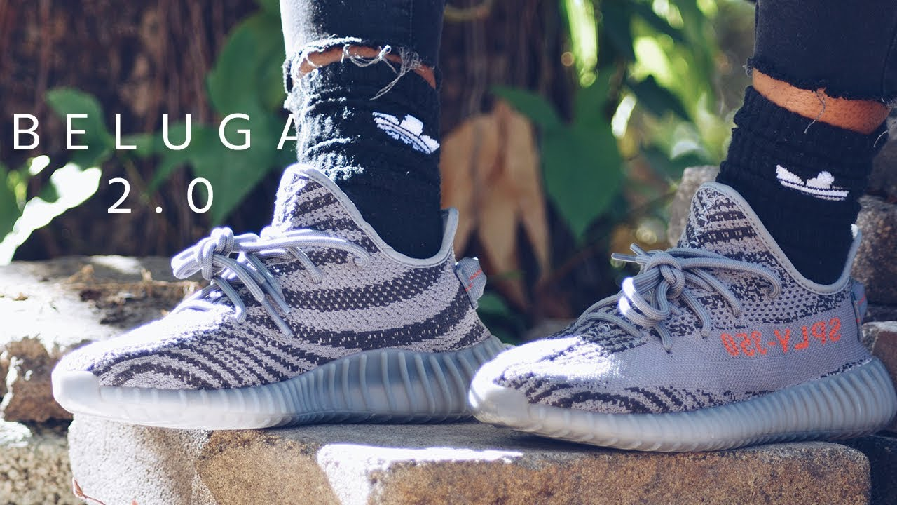 9e2902af46603f YEEZY BOOST BELUGA 2.0 ON-FEET - YouTube