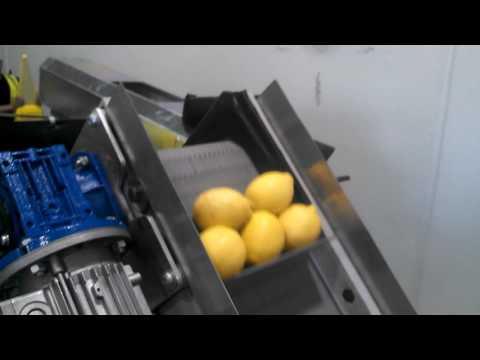 NEWTEC 2014A with VAS996 Net Welder for Lemons