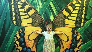 ПАРК БАБОЧЕК. ЕКАТЕРИНБУРГ - 2011. Butterfly Park. Ekaterinburg - 2011(, 2011-02-05T19:45:04.000Z)