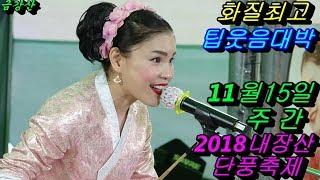💗버드리 병원 퇴원 빠른 회복중 멋진 공연💗 11월15일 주간 2018 내장산 단풍축제