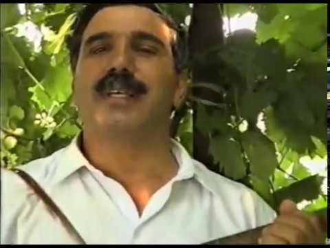 Xalq şairi Zəlimxan Yaqub Soğanlıq elində Gürcü Məmmədin qonağı (davamı)