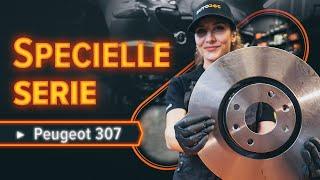 Nybegynder video vejledning til de mest almindelige Peugeot 307 Stationcar reparationer