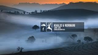 Khalid & Normani - Love Lies (Ownglow Bootleg) Video