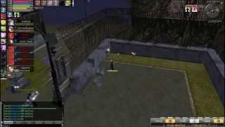 Ran Online GS Havoc Tyranny INT Magician