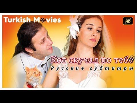 Кот скучал по тебе - Романтическая комедия (Русские субтитры)