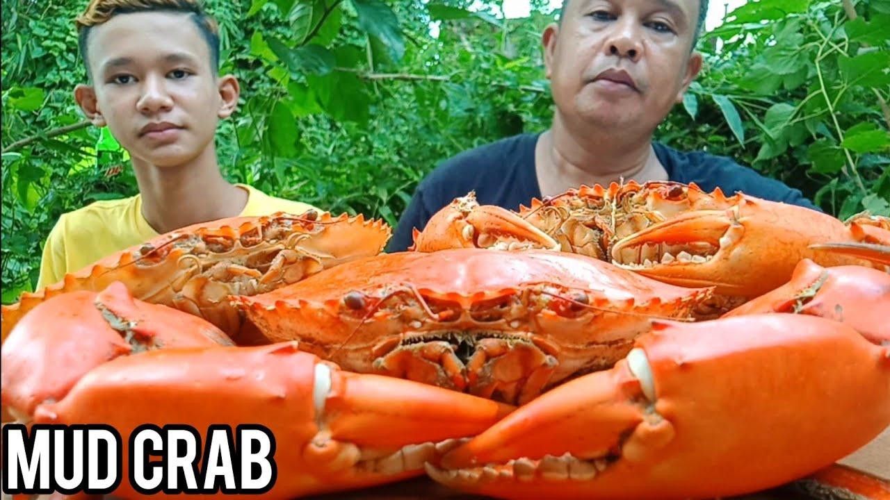 Download OUTDOOR COOKING | MUD CRAB | MUKBANG
