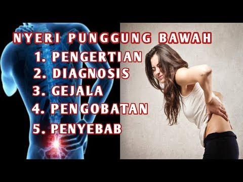 Nyeri punggungNyeri punggungbawahNyeri punggungNyeri punggungbawah(low back pain) adalah rasa nyeri .