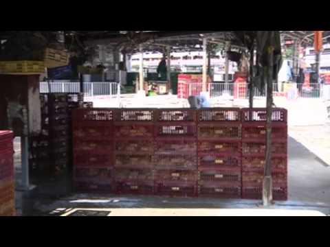 Hong Kong Begins Cull Of 15,000 Birds After H7N9 Bird Flu Found In Market