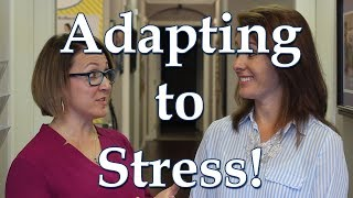 Adapt to Stress!