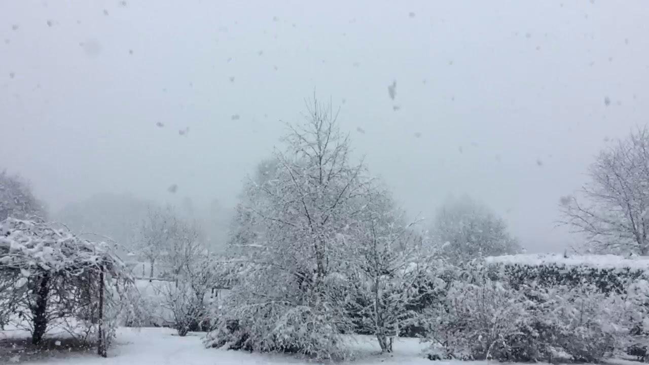 Snowfall Flocons De Neige Qui Tombent Ambiance Noel Blanc
