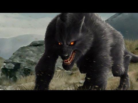 Самый опасный и безбашенный зверь! alexeyosokin