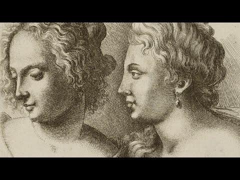 Leonardo, Rapunzel and the Mathematics of Hair - Professor Raymond E. Goldstein