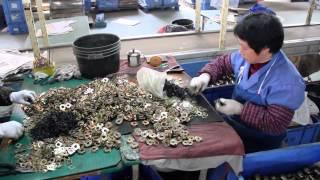 Фабрика в Китае | Китайский компот