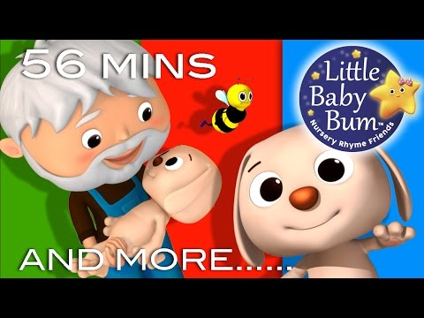 Bingo | Part 2 | Plus Lots More Nursery Rhymes | 56 Minutes Compilation from LittleBabyBum!