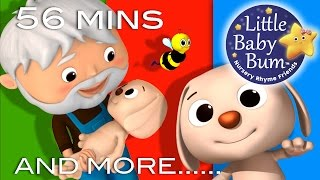 Bingo | Part 2 | And More Nursery Rhymes | From LittleBabyBum