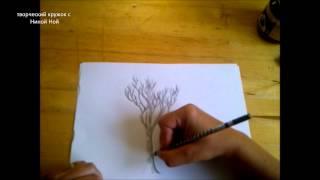 КАК НАРИСОВАТЬ ДЕРЕВО (очень просто, для начинающих)(Здравствуйте! Предлагаю вашему вниманию видеоролик, где я показываю, как очень просто нарисовать дерево..., 2014-07-30T22:31:40.000Z)