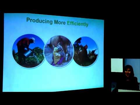 Agricultural Productivity , Food Security and Trade