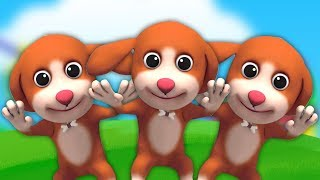 lima anak anjing kecil | sajak pembibitan | puisi untuk bayi | 3D Kids Rhymes | Five Little Puppies