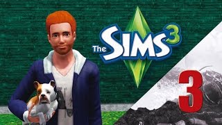 The Sims 3 Gameplay #3 - PC novo e Kill Bill sortudo!