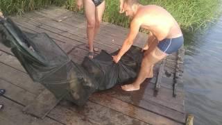 Рибалка слатине