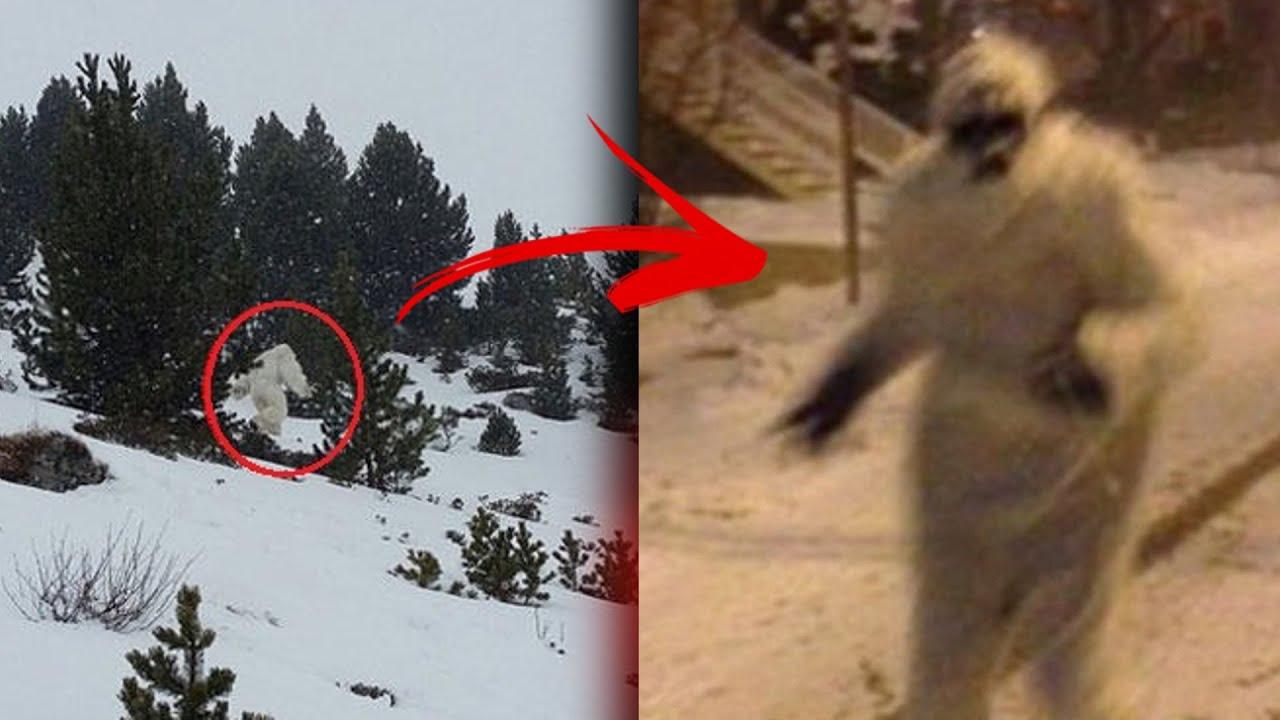 ¿El Yeti existe? EVIDENCIAS REALES QUE LO DEMUESTRAN | Abominable hombre de las nieves |