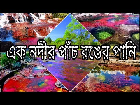 The River of five colour এক নদীর পাঁচ রকম রঙ Colombia cao cristales Rio Cano castales