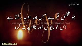 Aise logon Se Mohabbat Ki ummid Na rakho, امید, Ummid, WhatsApp status, Aqwale Hazrat Ali RA