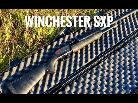 Winchester SXP 12-Gauge- Full Choke Pattern