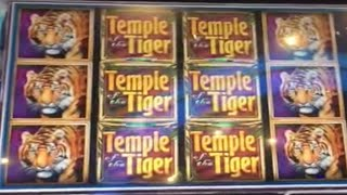 ** $500 Free Play ** BIG WINS ** Temple of the Tiger ** SLOT LOVER **(Slot Lover - Slot Machine Videos Channel Usually Post : Big Wins, Super Big Wins, Live Play, Double or Nothing, High Limit Pulls with Friends To Support our ..., 2015-11-20T05:41:00.000Z)