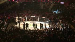 CM Punk UFC debut entrance UFC 203