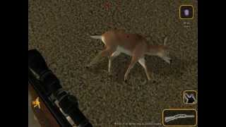 Deer Hunter 2005 Gameplay PC