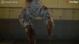 Ужастик с участием собаки паука
