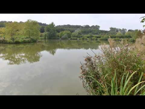 Elphicks Fisheries - Lakes