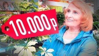 На что потратит бабушка 10.000 рублей? АЙДЭН