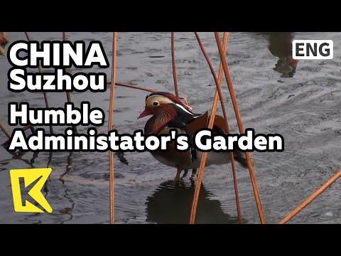 【K】China Travel-Suzhou[중국여행-쑤저우]졸정원/Humble Administator's Garden/Zhuozhengyuan/Pond/Mandarin duck