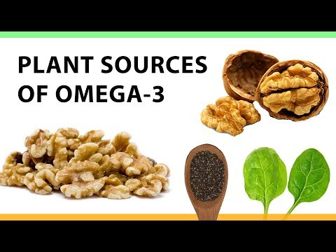 Plant Sources of Omega-3
