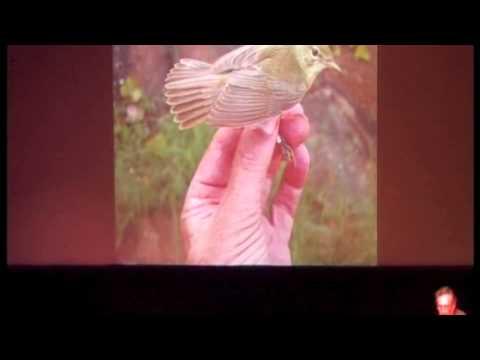 African Bird Club Annual Meeting 2014 - David Pearson