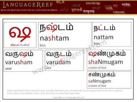 Learn Sanskrit Letters In TamilVada Mozhi SotrkalModern Consonants