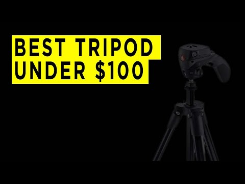 Best Tripods Under $100 - 2020 - Photography PX