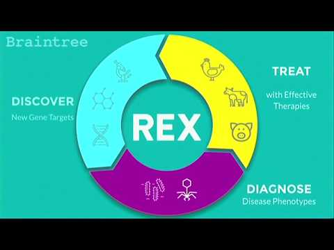 How Rex Animal Health uses Azure Web Apps to Help Streamline its Operations