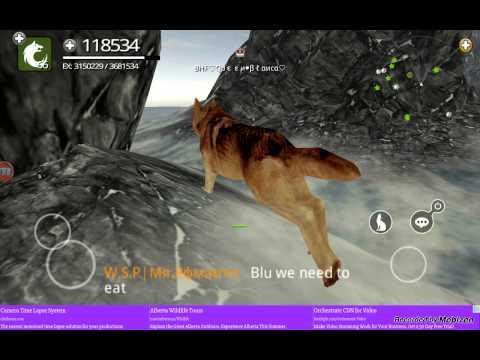 online games wolf