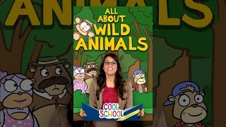 The Best of Wild Animal Stories and Crafty Carol Animal Crafts! - Cool School Compilation
