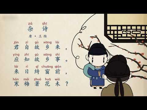 【古诗精选·五言绝句】第14节 唐·王维《杂诗》