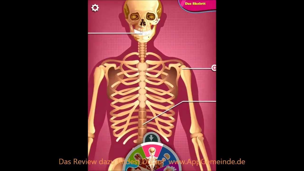 Erklär mir, Tom: Was ist der menschliche Körper - Gameplay ...