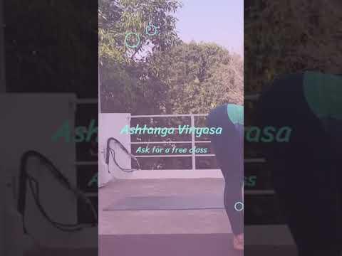 chaturanga dandasana  youtube