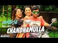 Chandhamulla Lyrics Majnu