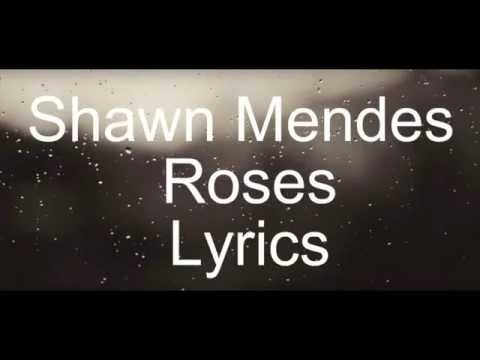 Shawn Mendes - Roses [ Official Lyrics Video ]